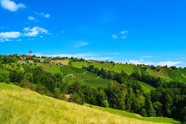 Panorama Steinreib, Hochgrail, St.Stefan ob Stainz; Ferienhaus / holiday home Schilcher-Residenz