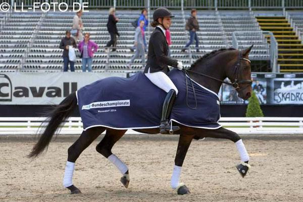 Fiderallala 2014 in Verden. Sieg in der Einlaufprüfung der 6.jähr. Dressurpferde