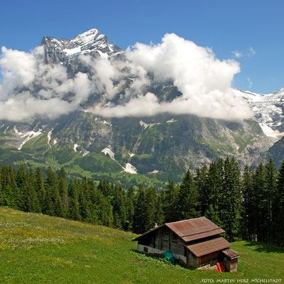 Schweiz, Berner Oberland, Grindelwald, Wetterhorn