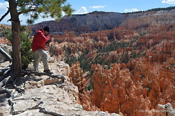 USA, Utah, Bryce Canyon National Park