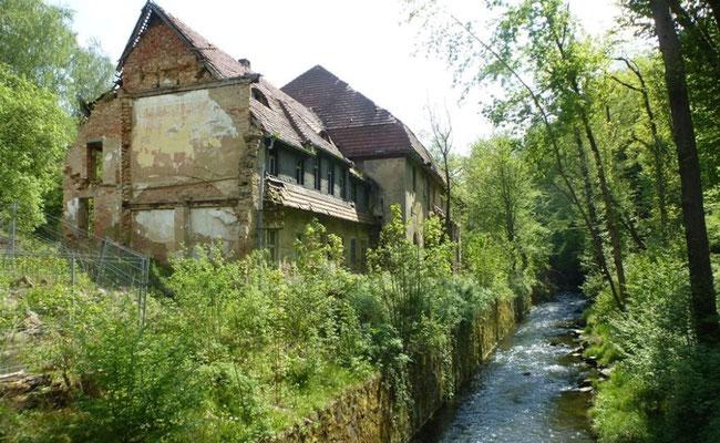 Niedermühle, Papierfabrik Seifersdorf, Zustand als Ruine 2014