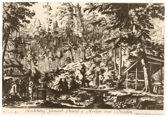 Radeberger Bad, Quellen im ursprünglichen Zustand