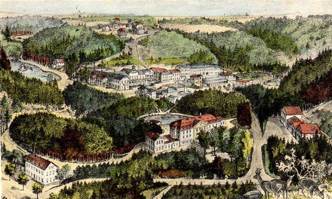 Augustusbad, Gesamtanlage etwa von Norden gesehen. Oben der Luisenhof (auf dem Silberberg), links oben der Schwanenteich, links unten das Schweizerhaus an der Straße nach Seifersdorf (Richtung Schöne Höhe)