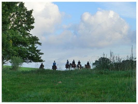 Liegau, Hänge zum Silberberg, Pferdesport in Liegau 2