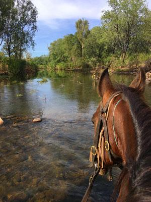 Morgenritt durch den Pentecost River