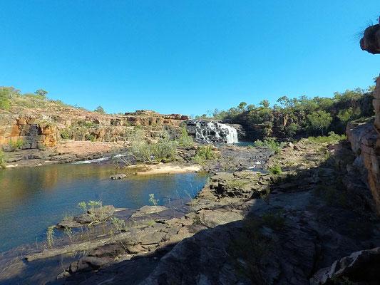 Blick am Ende des Walks auf die Manning River Falls