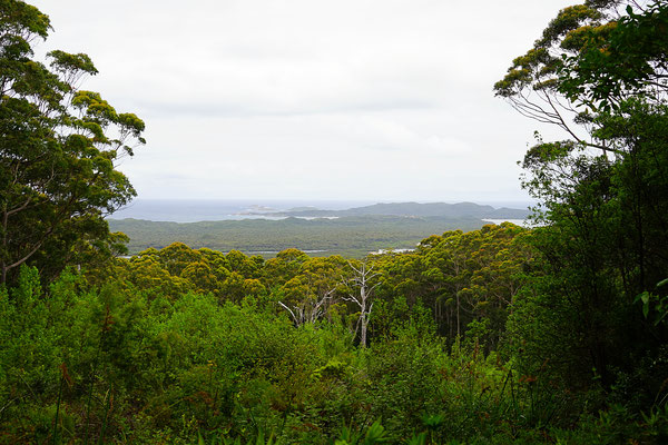 Hill Top Lookout