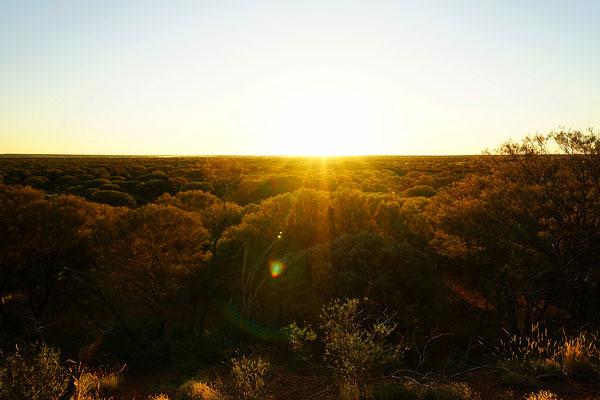 Sonnenuntergang über dem Outback