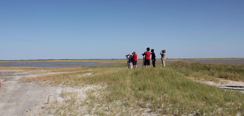 Blick in die Nata Salzpfanne in Südafrika