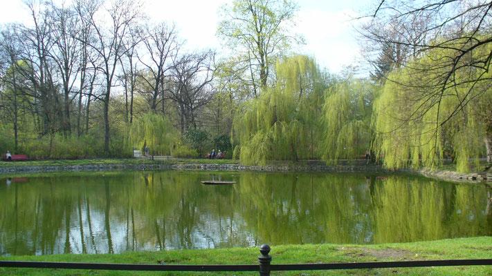 Im Stadtpark Steglitz