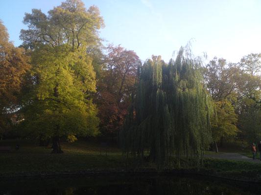 Park in Alt- Tempelhof