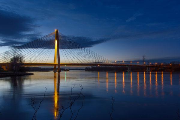 Die Rosenbrücke in Tulln