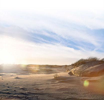 Dünen - Ferienwohnungen Norderney - norderney.top