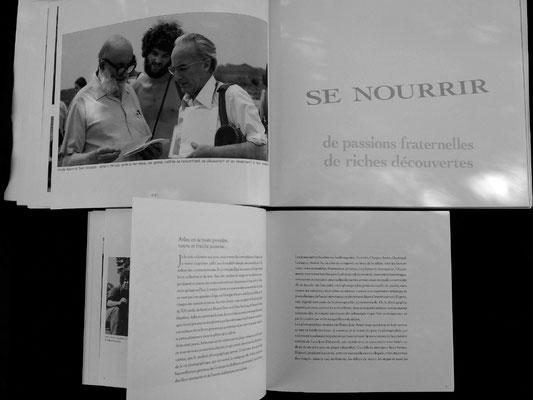 le livre de pierre jean amar est petit et a trop peu de photographies de qualité