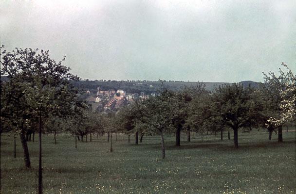 Blick vom Niederberg auf die Schillerstraße und das Russland-Gelände ca. 1940 (Nachlass Muhl) - Bearbeitung Wolfram Dietz