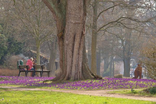 Frühlingsimpression Teichanlagen