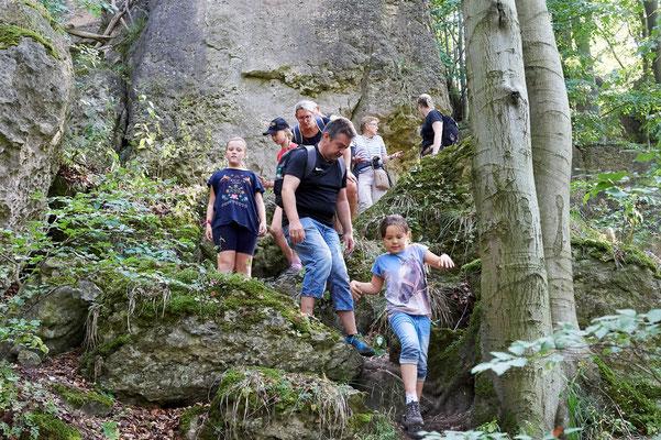 Die Wanderung führte die Teilnehmer durch ursprüngliche Teile des Ith (foto: Jürgen Bommer)
