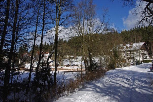 Wandern und Langlauf direkt ab  Wohnung