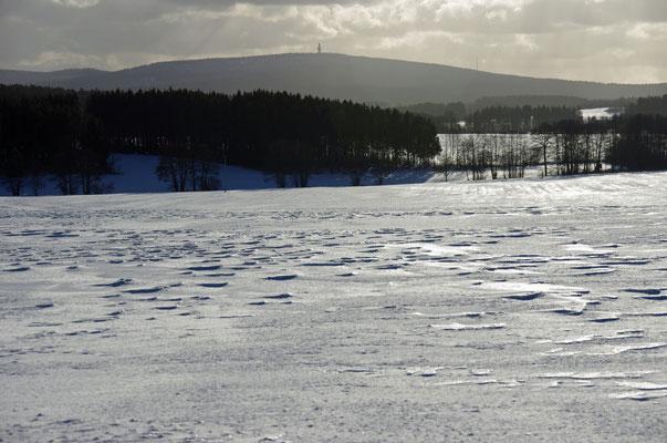 Der Schneeberg im Hintergrund