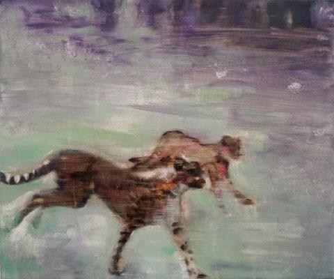 Ghostcheetahs 50x60 cm Oil/Canvas 2014