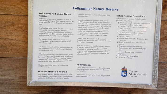 Folhammer Gotland , irrlichtjaeger