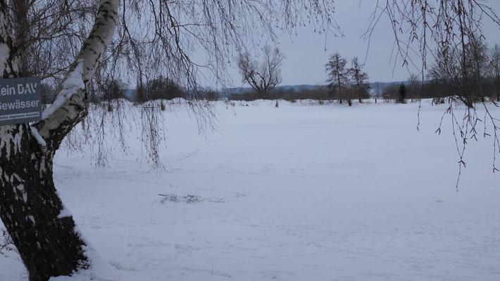 Der zugefrorene Anglerteich