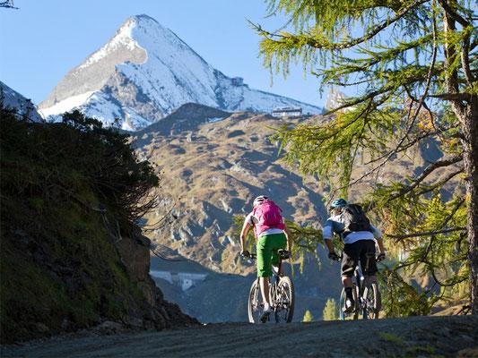 Mountainbike in Zell am See / Kaprun