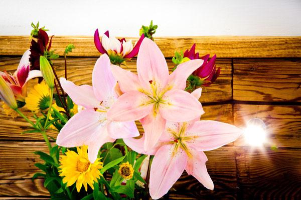 Blumen am Zimmer