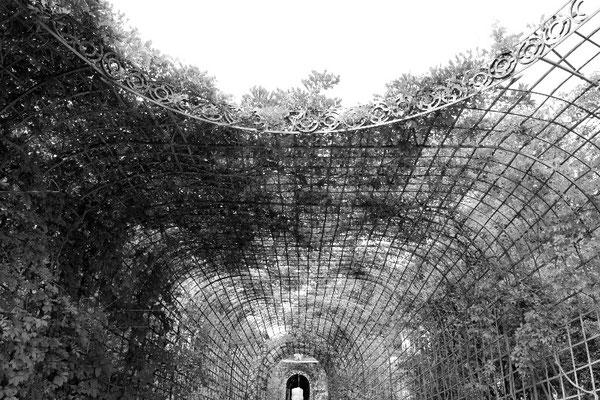 Tunnel - Schwetzingen
