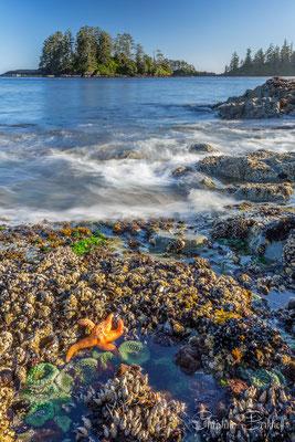Schooner Cove, Vancouver Island