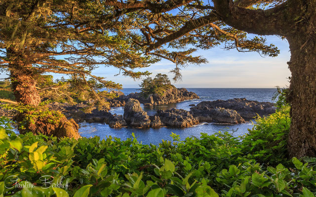 Ucluelet, Vancouver Island