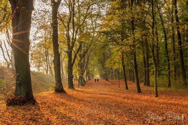 Braunschweig, Niedersachsen