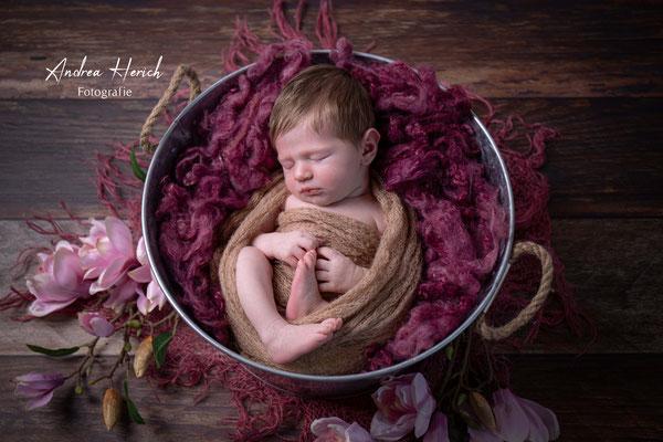 Newbornfotografie Dachau, Babyfotografie Dachau, Andrea Herich Fotografie, Fotograf Röhrmoos, Neugeborenenfotografie, Neugeborenenfotos