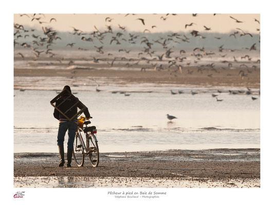 en chemin vous verrez les pêcheurs à pied