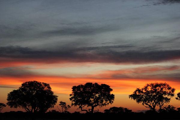Abendstimmung in Afrika