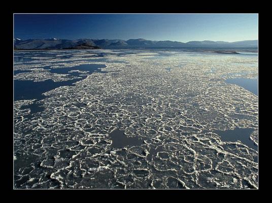 Eiseinfluss am Kluane Lake