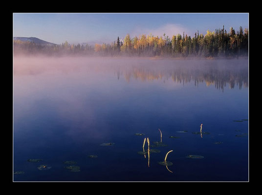 Morgenstimmung am Kluane Lake