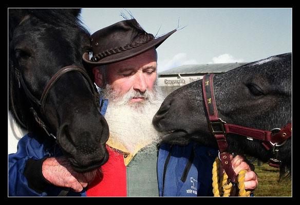 Pferdemarkt Ballinasloe