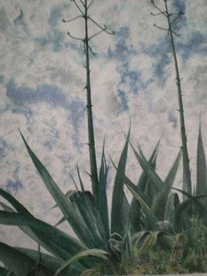 """Cypern III """" Stachelig """" 40 x 50 / 2002 / ----CHF 500----"""