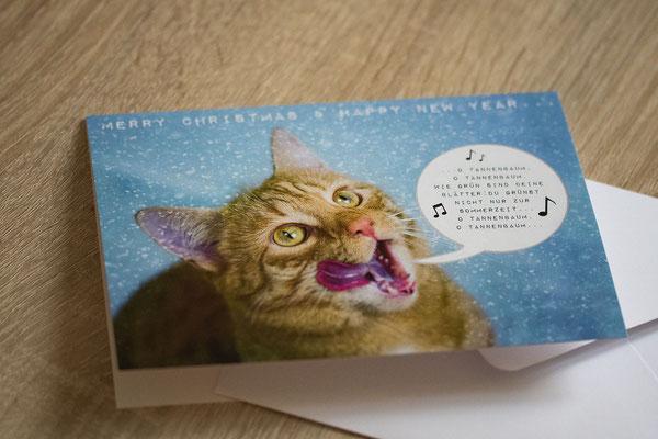 Fotografie & Kartendesign für Katzenpension Mikesch www.morgenlicht.ch