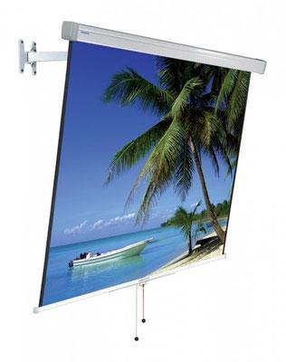 Projecta FlexScreen