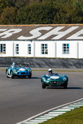 Aston Martin DBR1 et DB3S, 1959 RAC TT Celebration - Goodwood Revival 2019