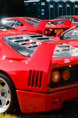Ferrari F40 - Goodwood Revival 2019