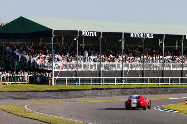 Shaun Lynn / Karun Chandhok, AC Cobra, RAC TT - Goodwood Revival 2019