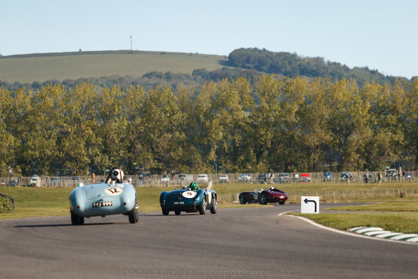 Stefan Ziegler, Jaguar Type-C, Freddie March Memorial Trophy - Goodwood Revival 2019