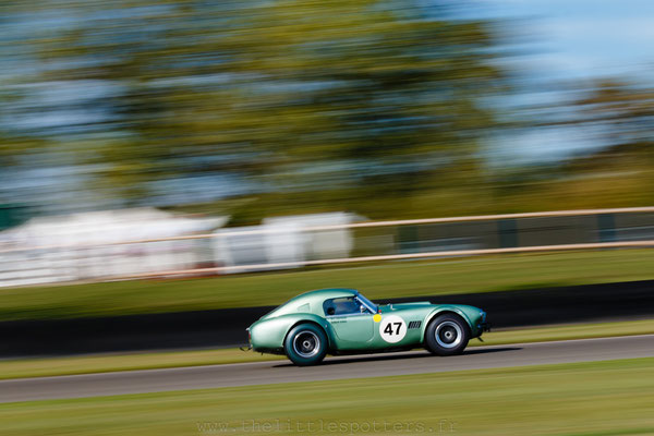 Bill Shepherd / Romain Dumas, AC Cobra, RAC TT - Goodwood Revival 2019