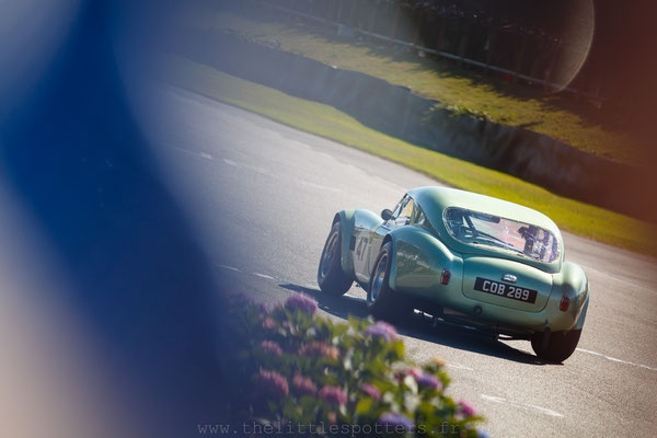 Bill Shepherd / Romain Dumas, AC Cobra, RAC TT Celebration - Goodwood Revival 2019