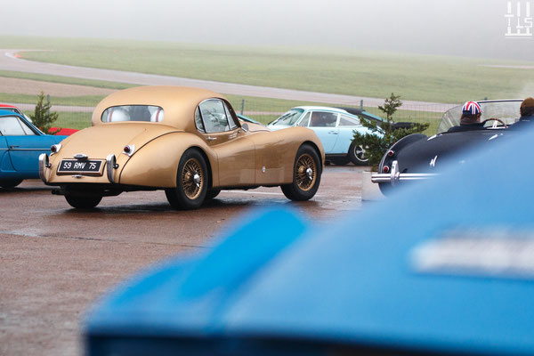 Jaguar XK120 - Journées d'Automne 2015, Circuit des Ecuyers.