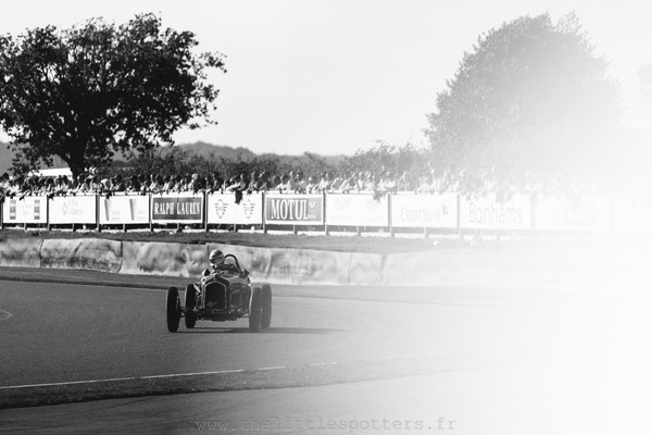 Charles Nearburg, Alfa Romeo Tipo B, Goodwood Trophy - Goodwood Revival 2019
