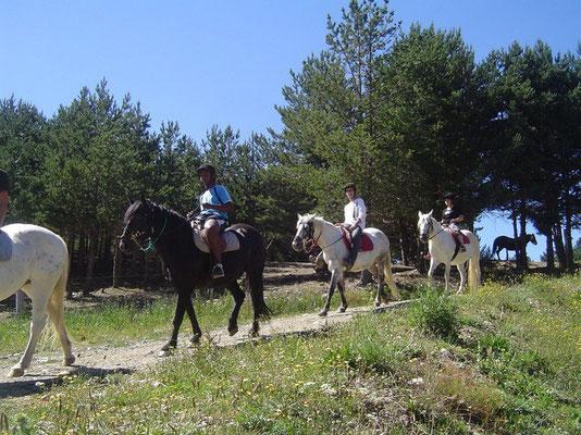 Loisirs équestres, balade ânes...